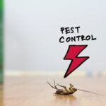 pest-control-services-in-delhi
